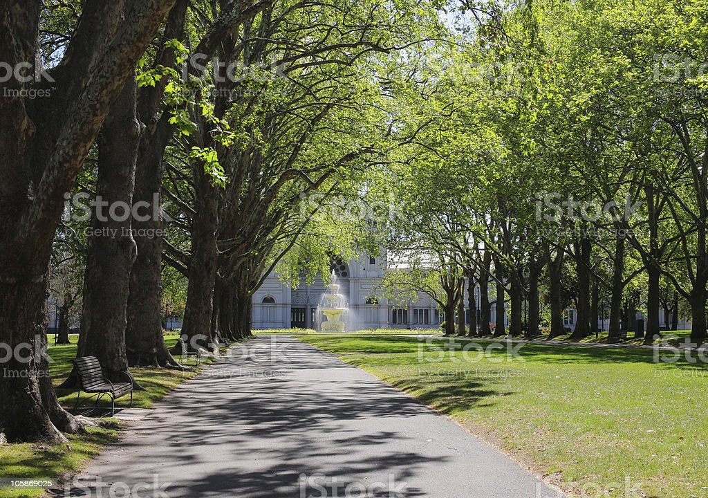 Tree lined Melbourne Street royalty-free stock photo