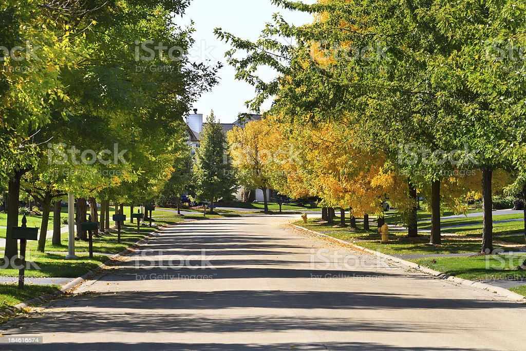 Tree lined residential street and neighborhood stock photo