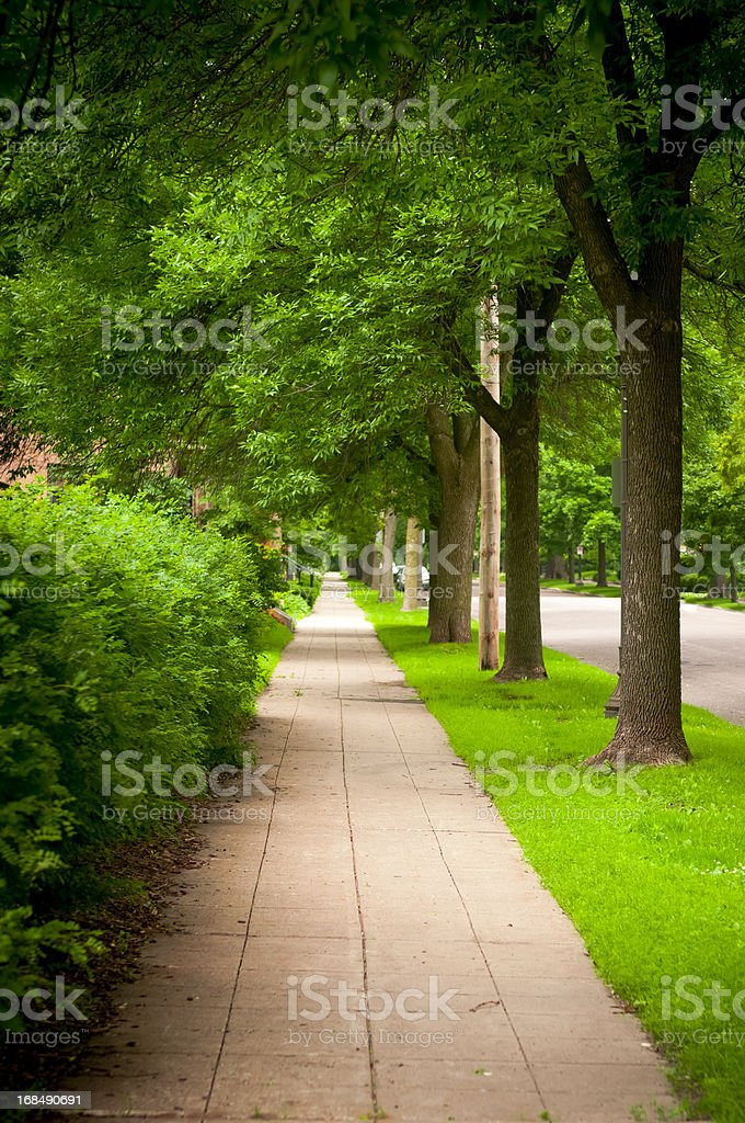 Tree Lined Urban Street and Sidewalk stock photo