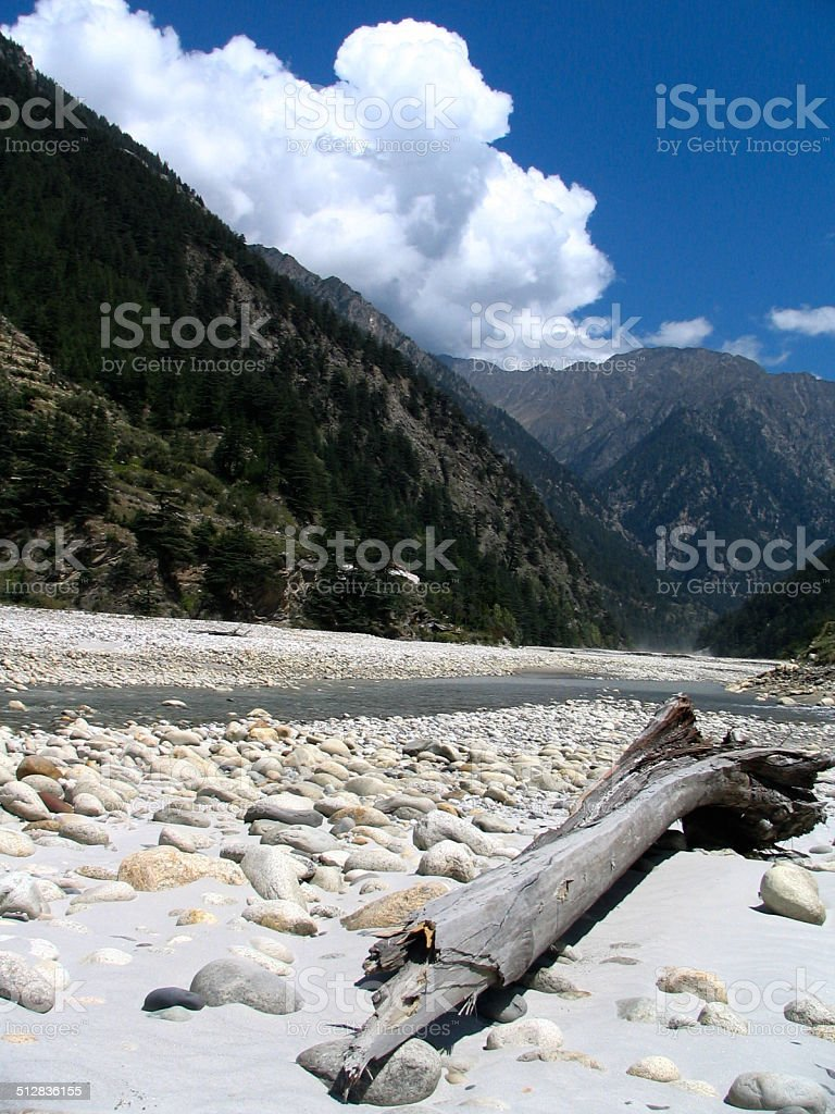 Tree log on the banks of a river in Himalayas stock photo