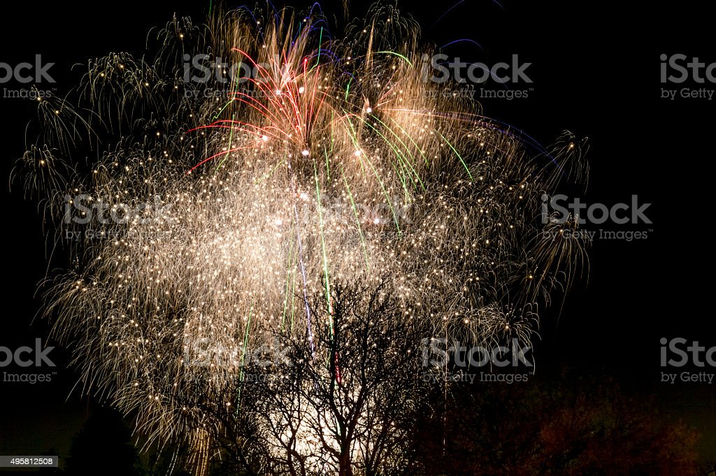Tree of fire stock photo