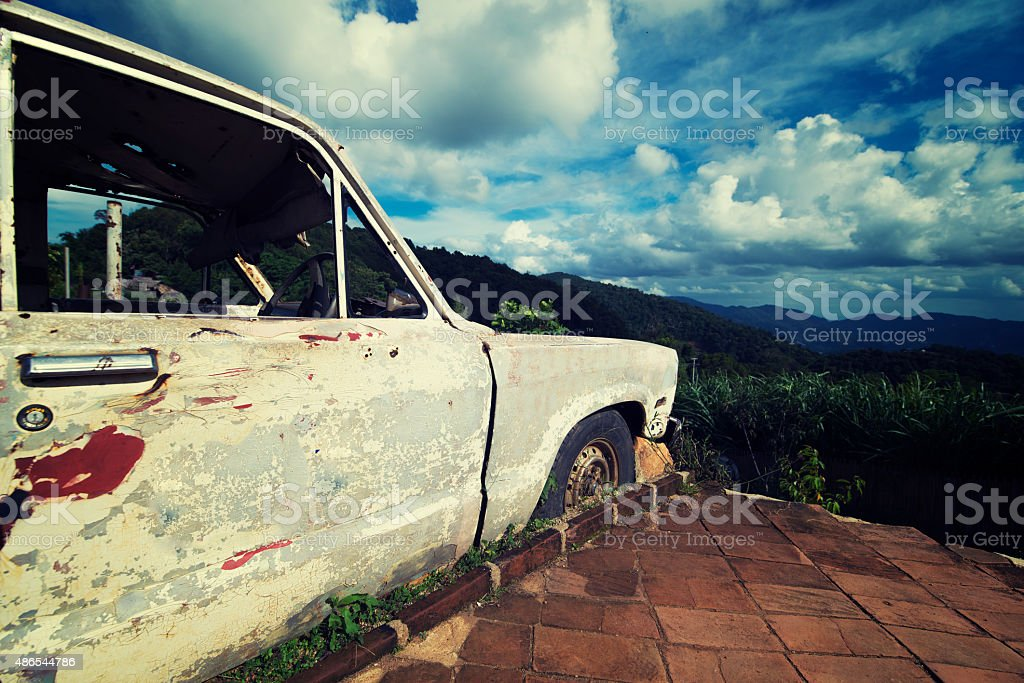 tree on old classic car stock photo