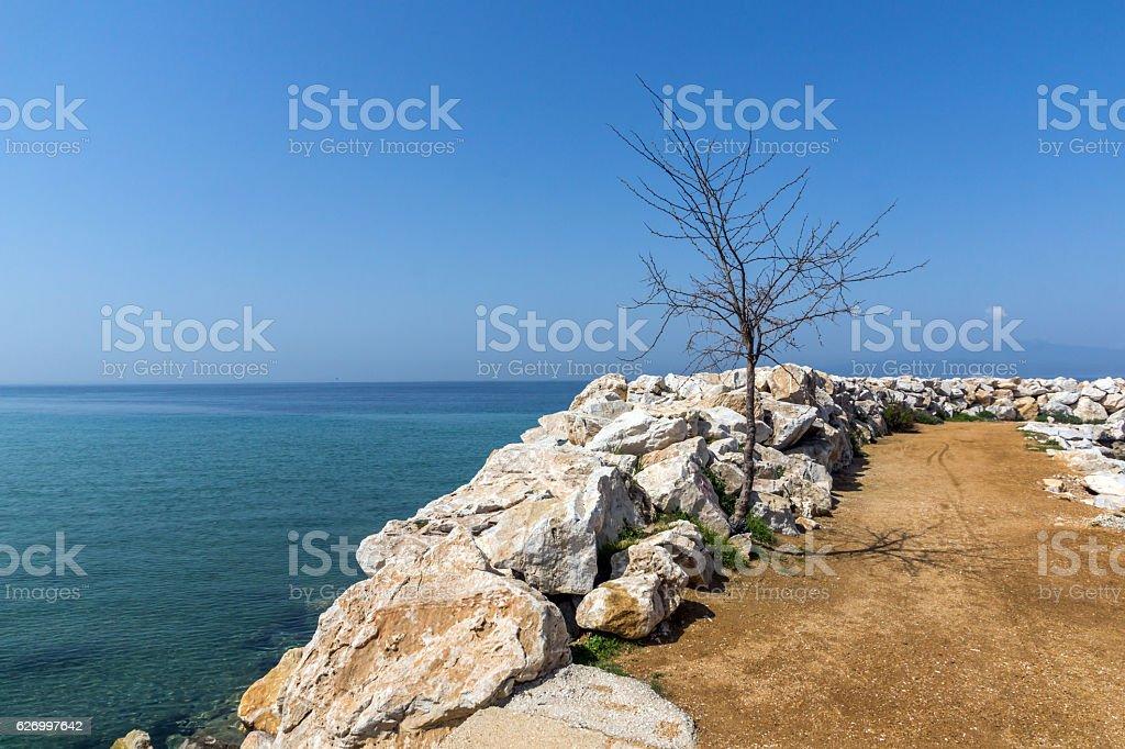 Tree on the pier of Skala Sotiros, Thassos island, Greece stock photo