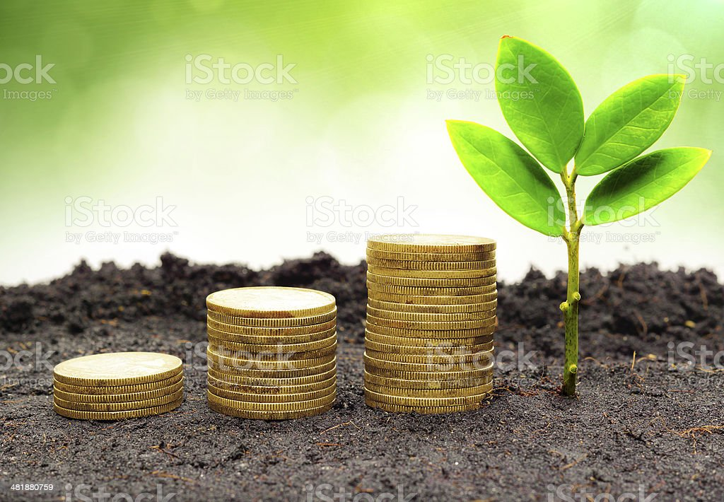 tree piles of coins with small trees stock photo
