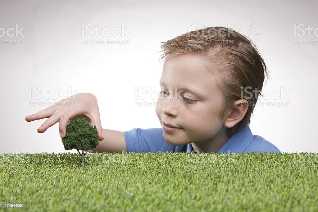 Tree Planting royalty-free stock photo
