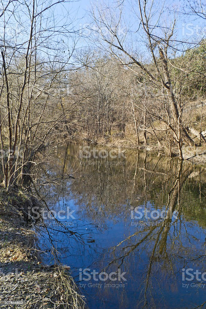Tree reflection at Brushy Creek Regional Trail stock photo