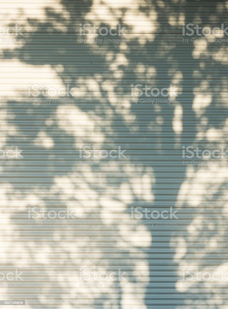 Tree shadow on white metal wall Nature Abstract background stock photo