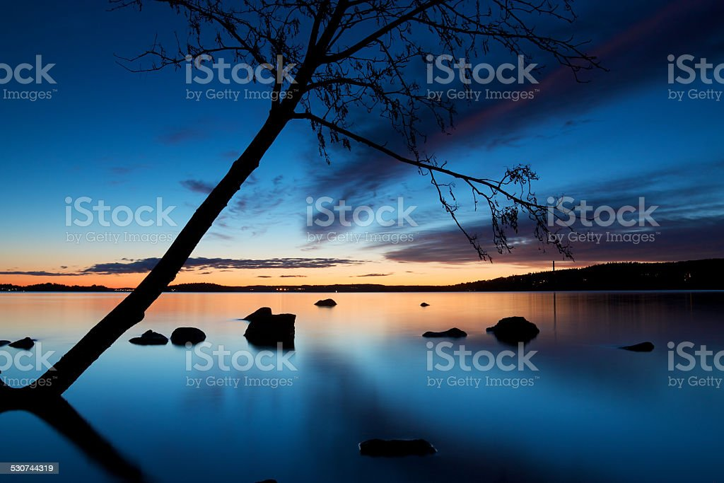 Tree silhouette leaning over Pyhajarvi lake in Tampere stock photo