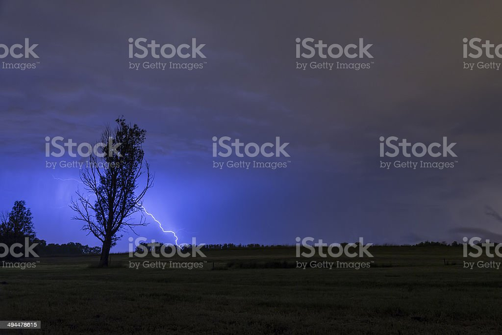 Tree silhouette thunderstrike stock photo
