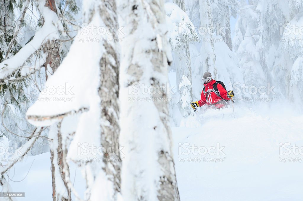 Tree Skiing royalty-free stock photo