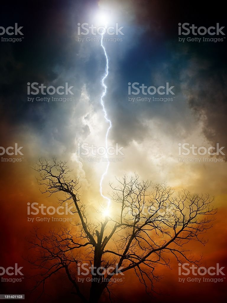 Tree struck by lightning stock photo