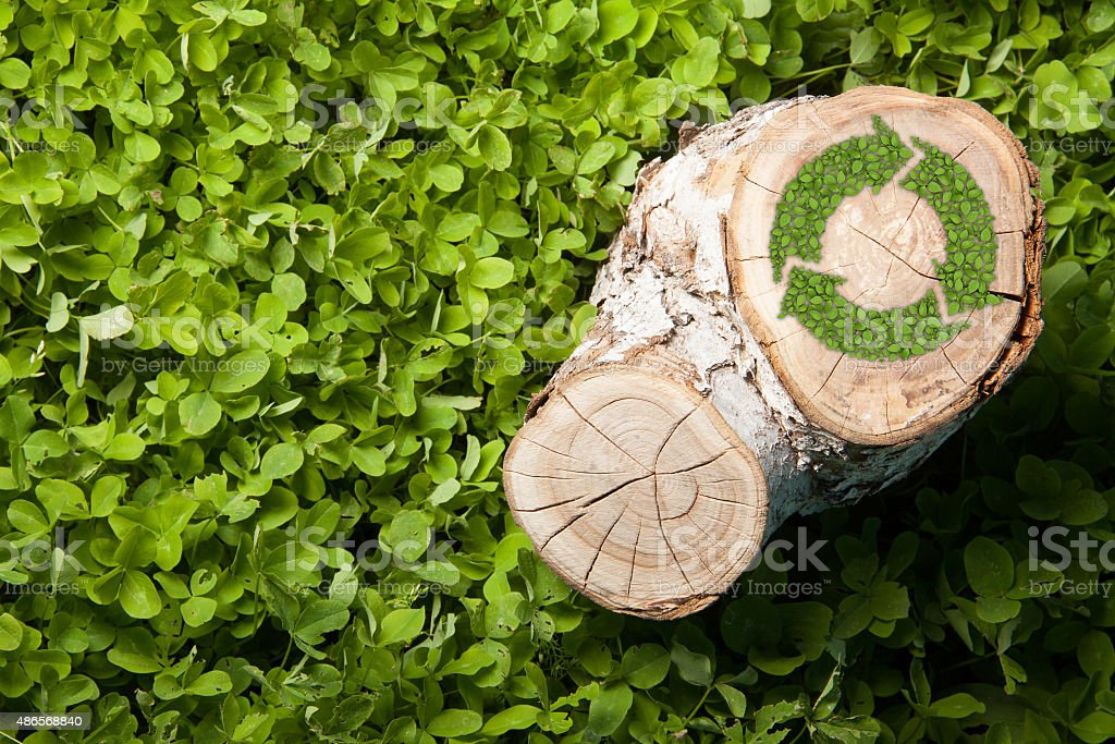 tree stump on the grass with recycle symbol, top view stock photo