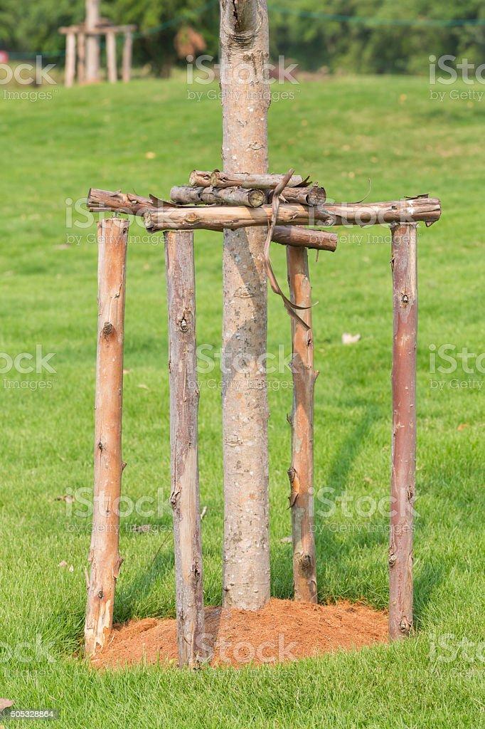 Tree supporter stock photo