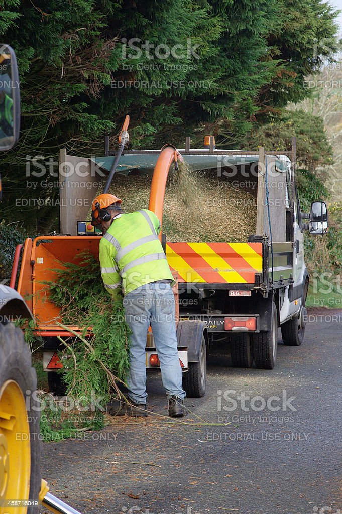 Tree Surgeon Chipping Branches stock photo