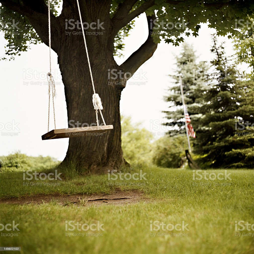 Tree swing stock photo
