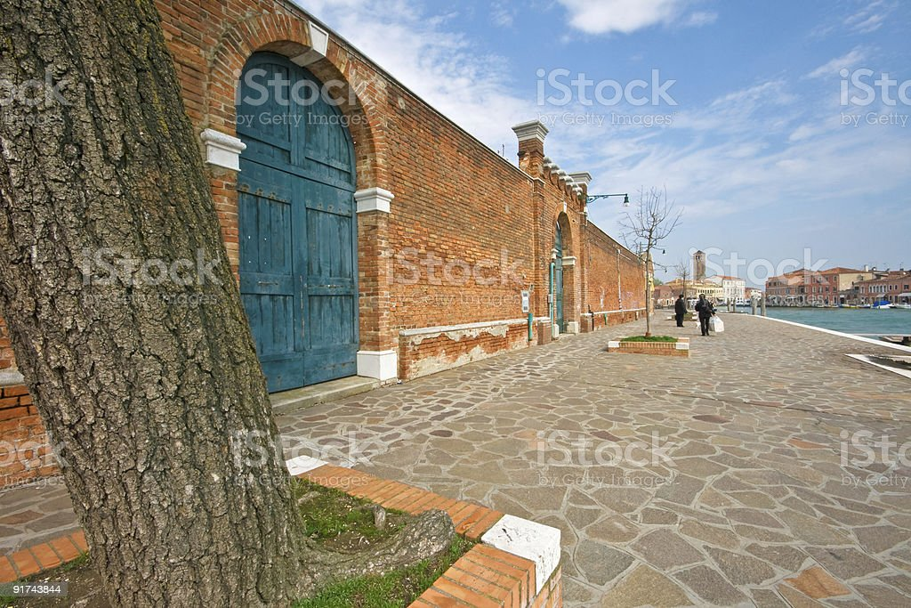 Tree trunck and bricks wall on a Venetian channel bank stock photo