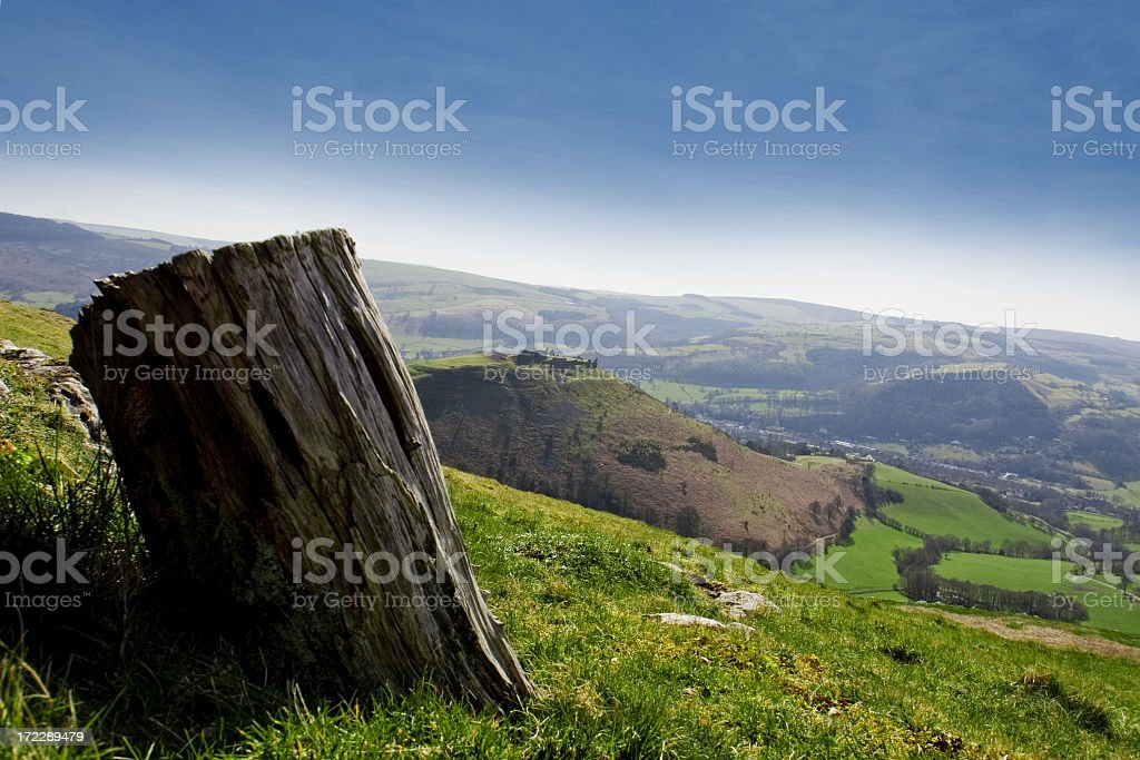 Tree trunk across from Dinas Bran Castle royalty-free stock photo
