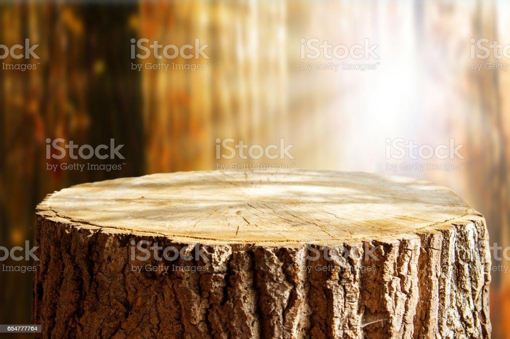Tree trunk background stock photo