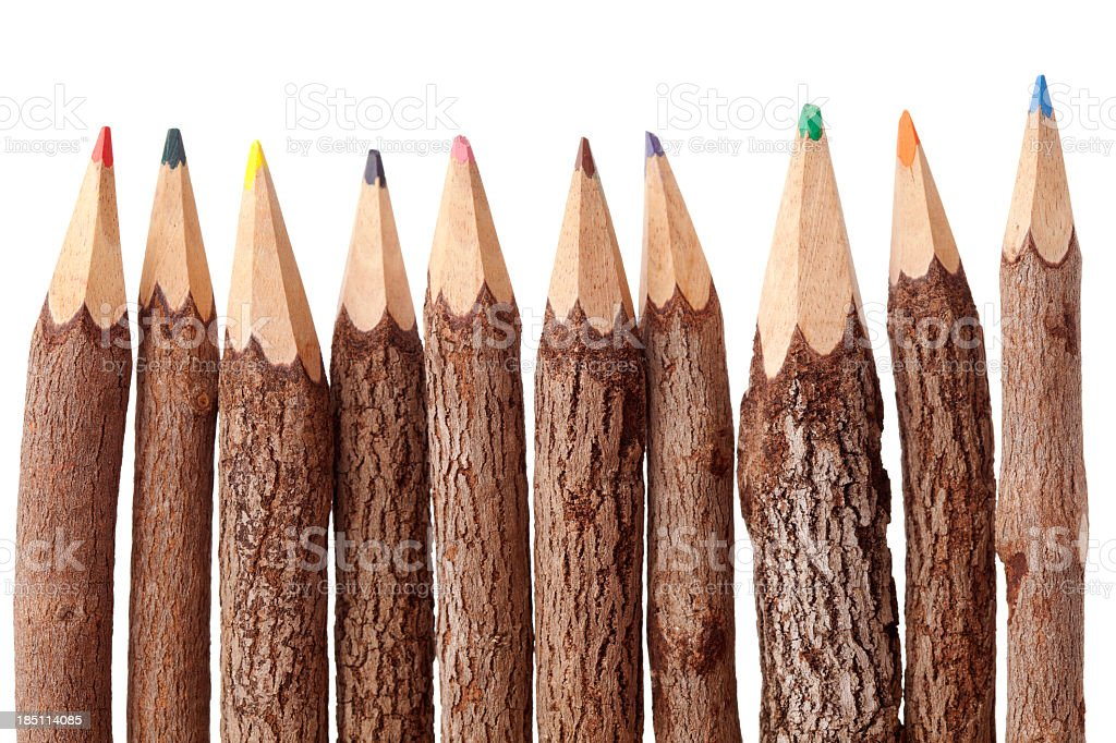 Tree Trunk Pencils royalty-free stock photo