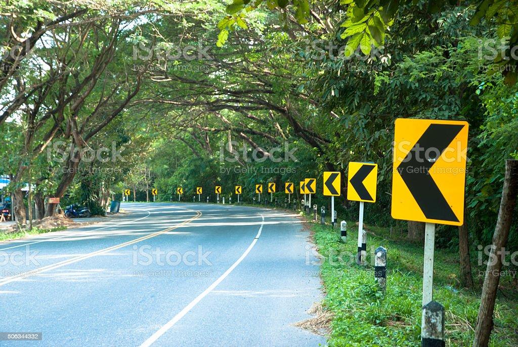 Tree tunnel a beatiful roadside. stock photo