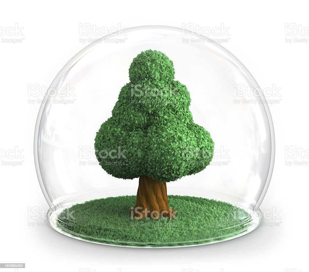 Tree under glass dome royalty-free stock photo