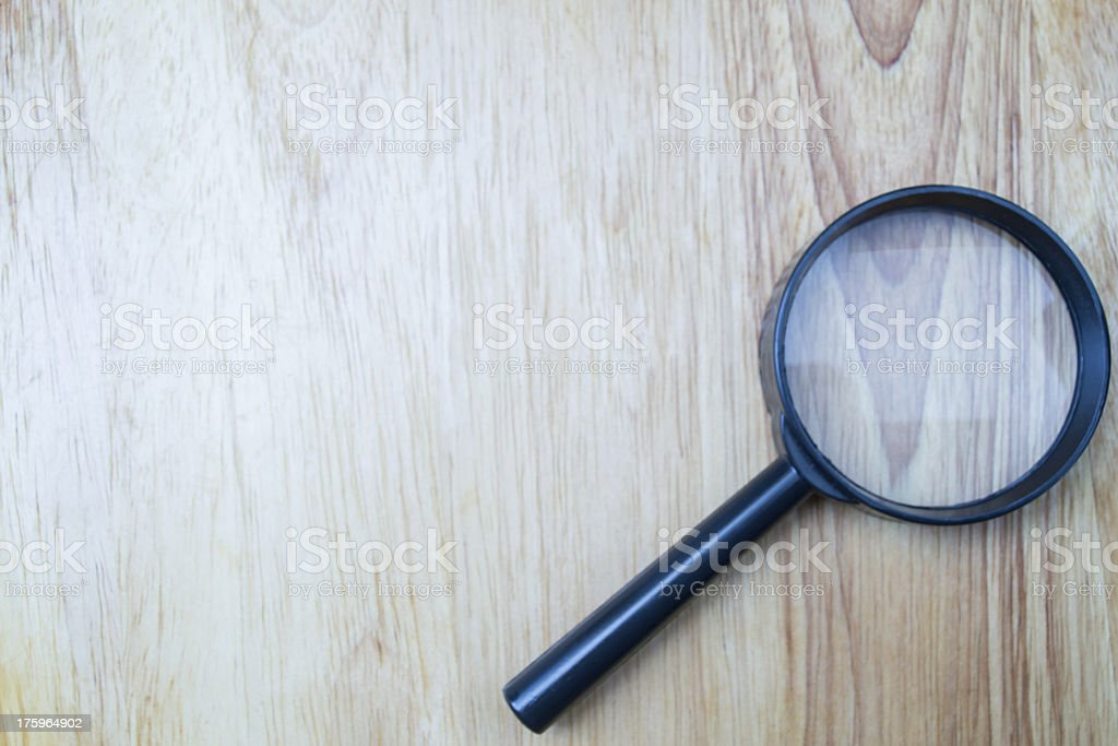 tree vein and magnify royalty-free stock photo