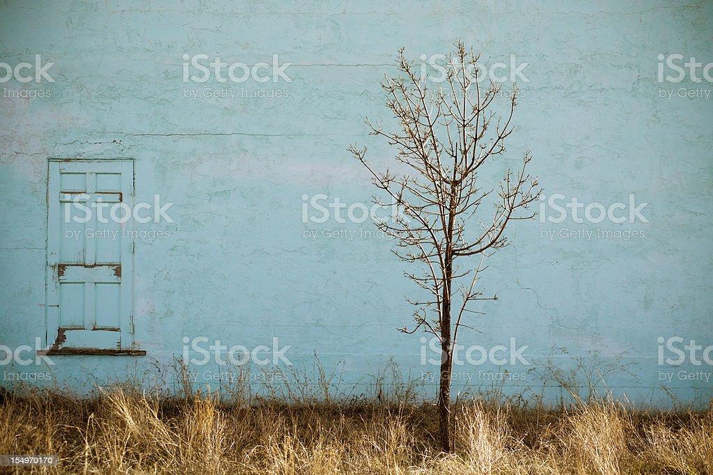 tree wall royalty-free stock photo