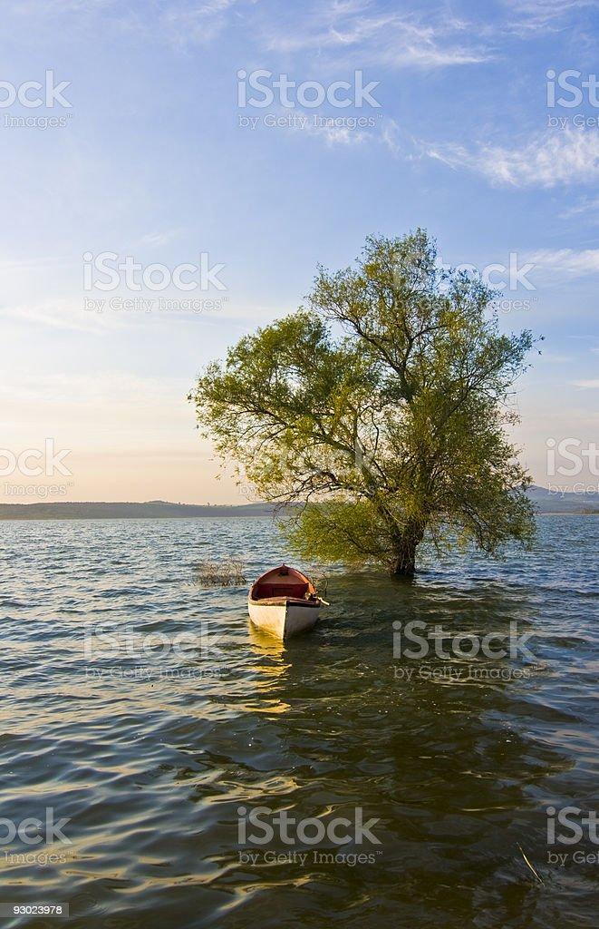 treeandboat stock photo