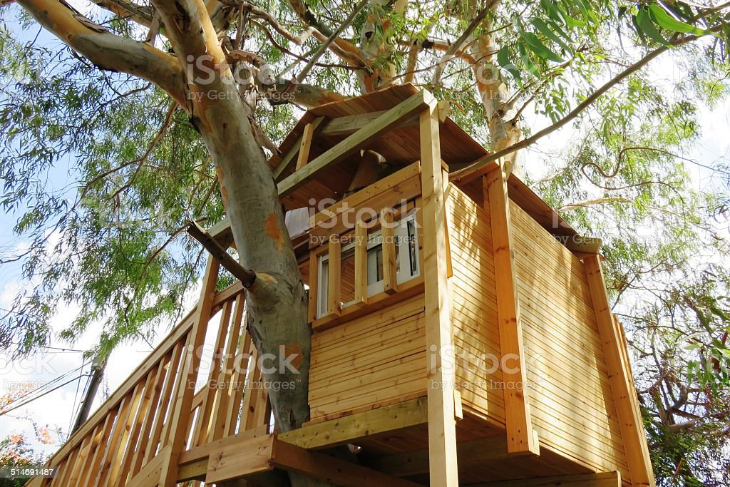 Treehouse stock photo