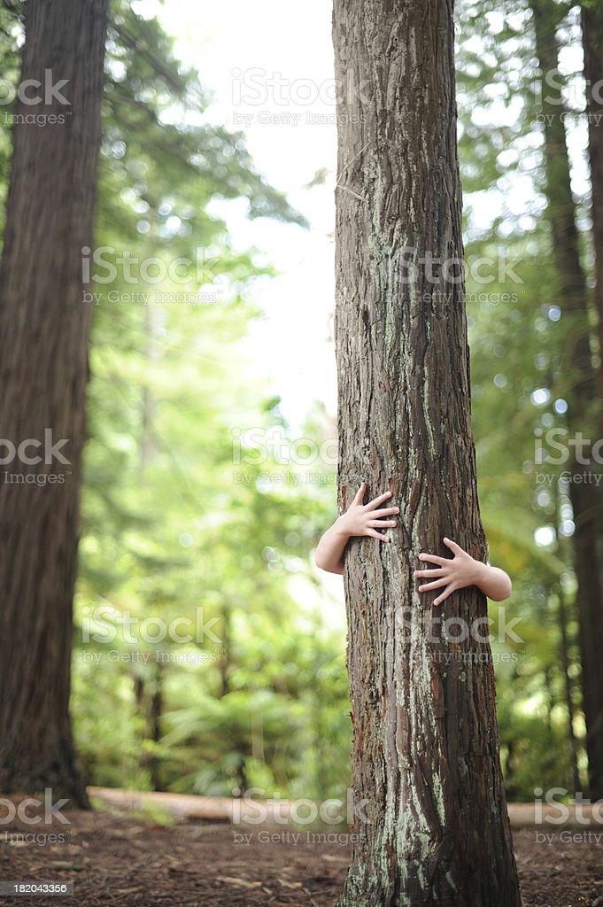 treehugger royalty-free stock photo