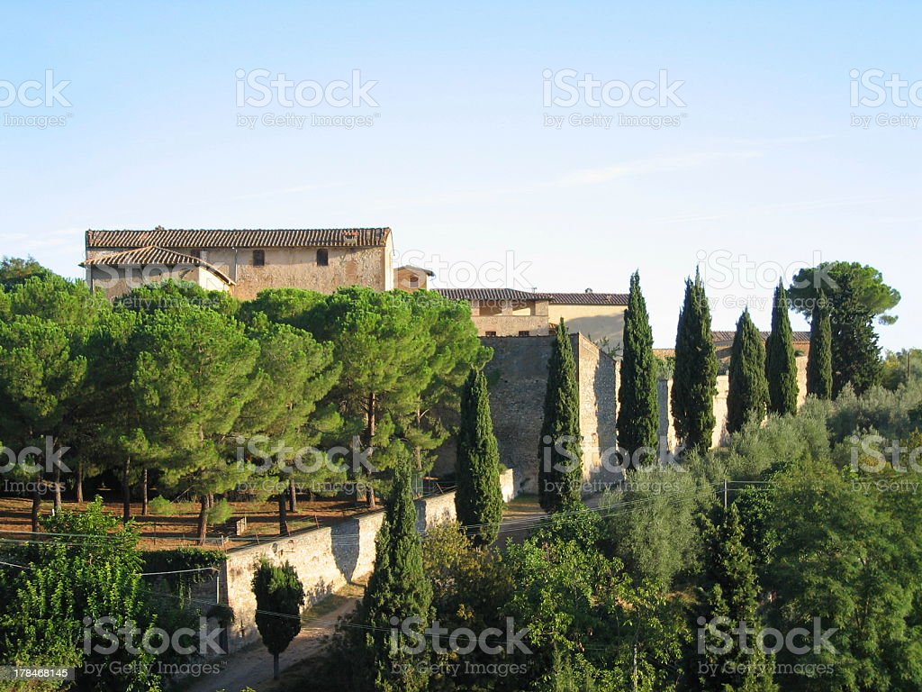 Tree-lined Drive caught in a Tuscan Sunrise royalty-free stock photo