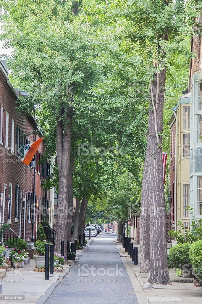 Treelined nieghbourhood royalty-free stock photo