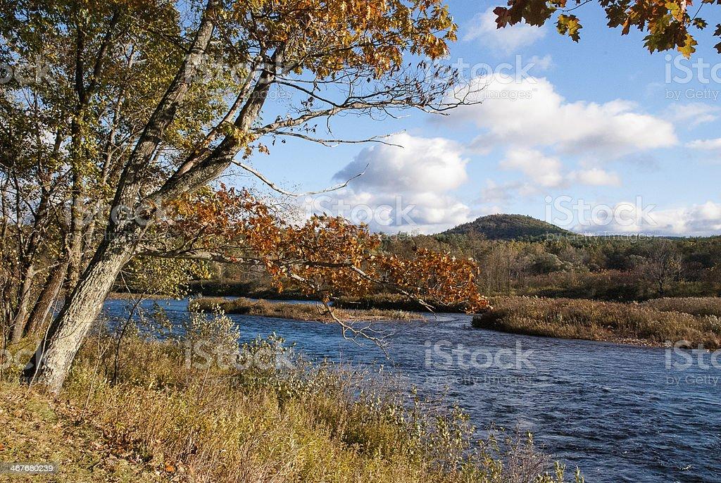 Tree-lined Riverbank along the Mohawk River Massachusetts stock photo