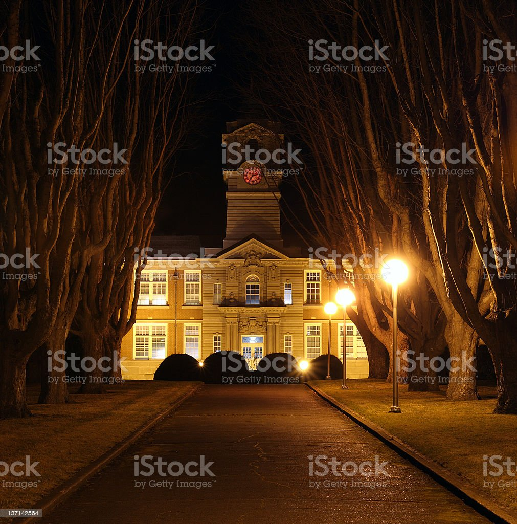 Tree-Lined Walkway and College Building at Night stock photo