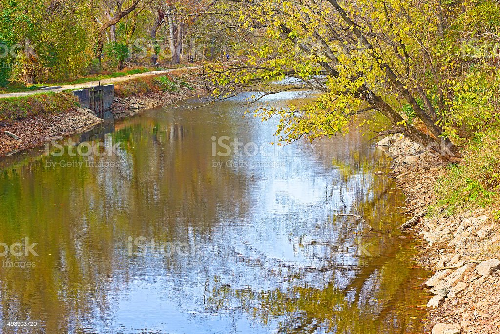 Trees along the Chesapeake and Ohio Canal in autumn foliage. stock photo