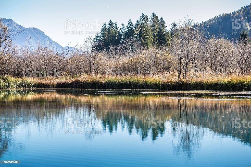 Trees and blue sky reflected in a tranquil lake stock photo