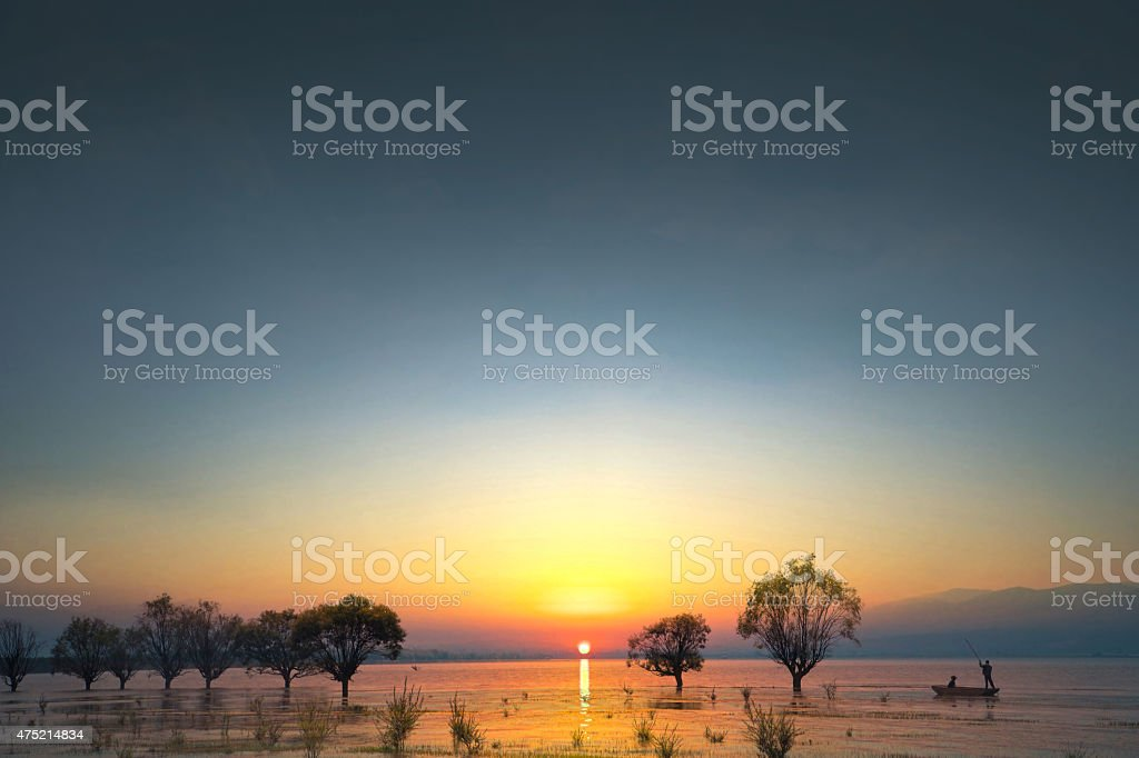 trees and boat stock photo