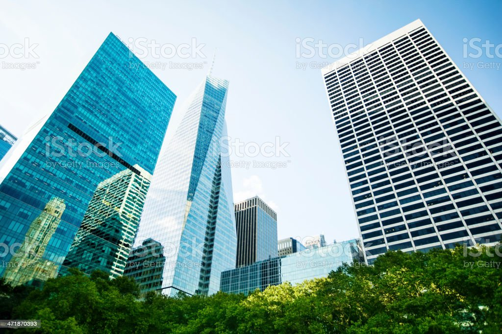 Trees and buildings royalty-free stock photo