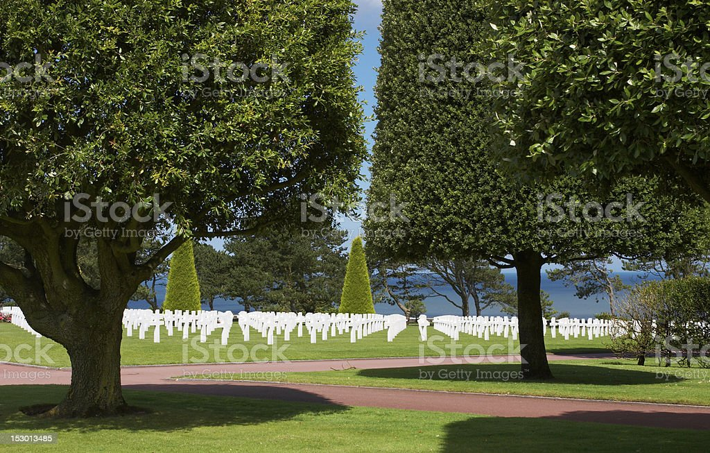 Trees and graves royalty-free stock photo
