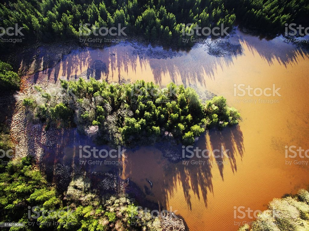 Trees and muddy lake stock photo