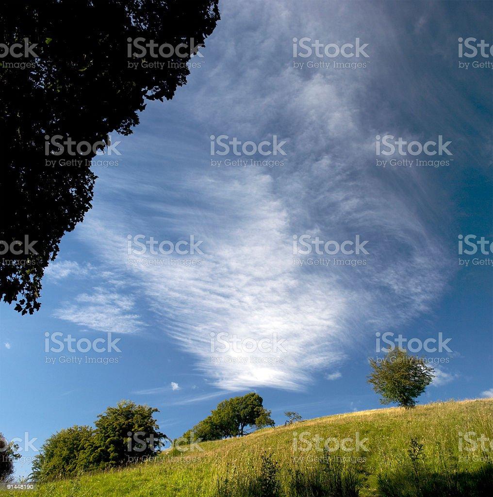 Trees and Sky royalty-free stock photo