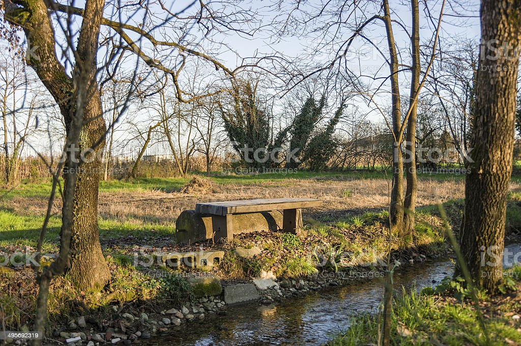 Trees, bench and river stock photo