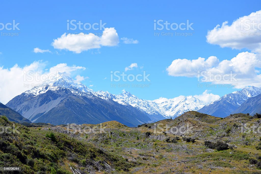 Trees cut down in pristine mountain wilderness stock photo