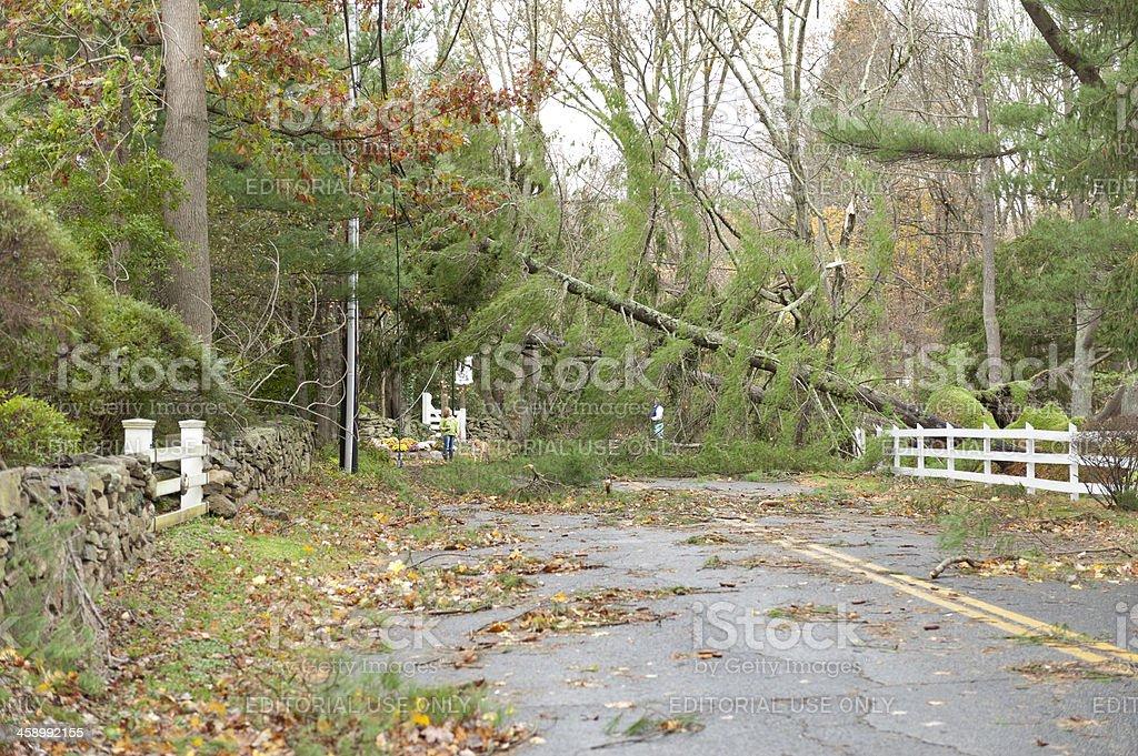 Trees fell across road during Hurricane Sandy stock photo