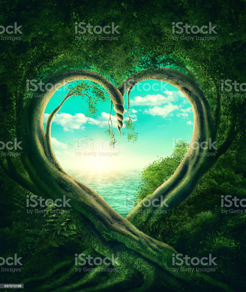 Trees forming a heart stock photo