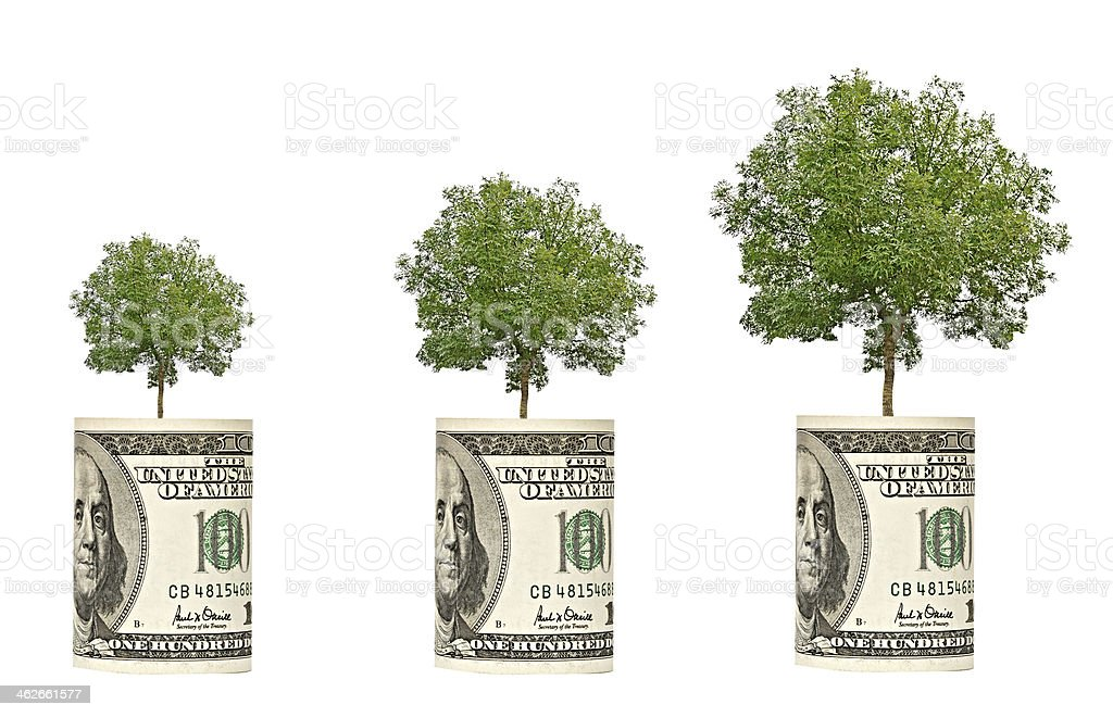 trees growing from dollar bill stock photo