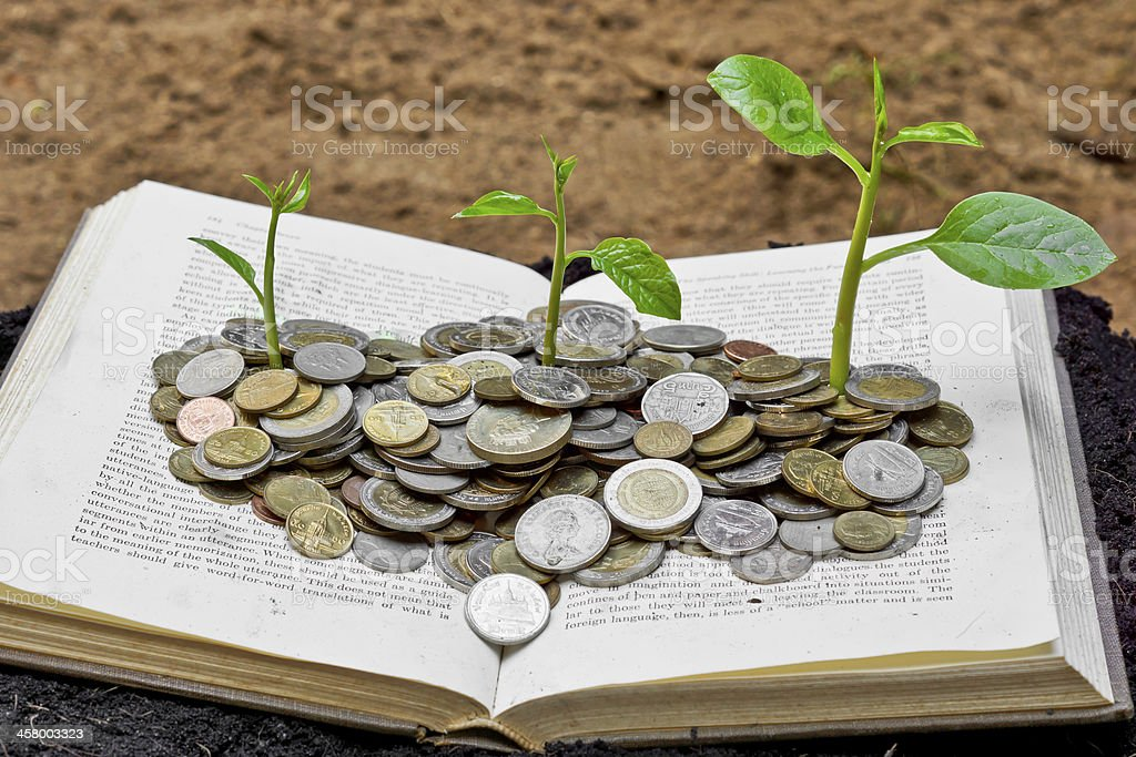 Trees growing on coins over the book stock photo