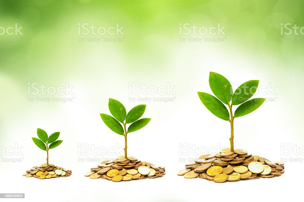 trees growing on coins royalty-free stock photo