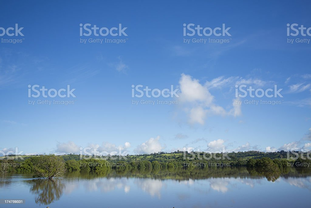 Trees in a Flooded Paddock royalty-free stock photo