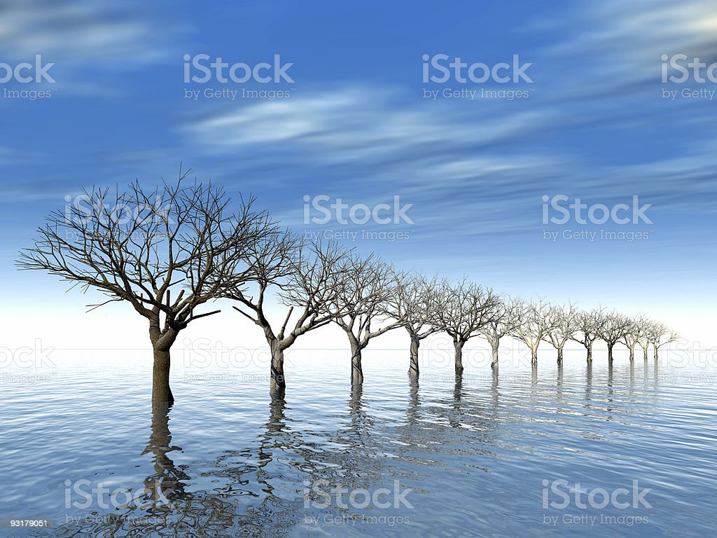 trees in surroundings water royalty-free stock photo